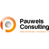 Pauwels Consulting NV